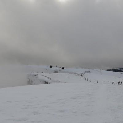 3-Winterwanderung durch die Französische Jura auf Schneeschuhen (2)