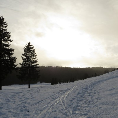 4-Winterwanderung durch die Französische Jura auf Schneeschuhen (3)