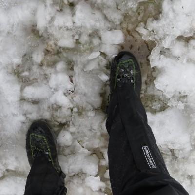 4-Winterwanderung durch die Französische Jura auf Schneeschuhen (9)