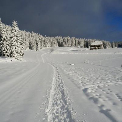 5-Winterwanderung durch die Französische Jura auf Schneeschuhen (10)