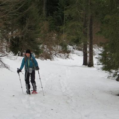 5-Winterwanderung durch die Französische Jura auf Schneeschuhen (4)