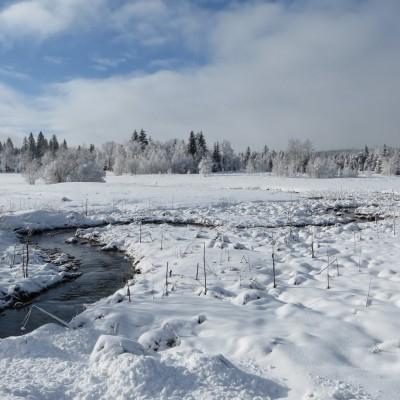 6-Winterwanderung durch die Französische Jura auf Schneeschuhen (11)