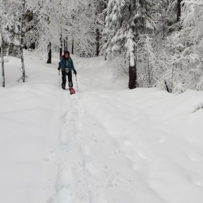 7-Winterwanderung durch die Französische Jura auf Schneeschuhen (12)