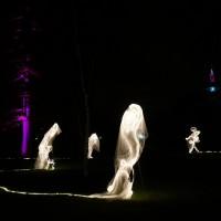 Winterlichter im Palmengarten Frankfurt (5)