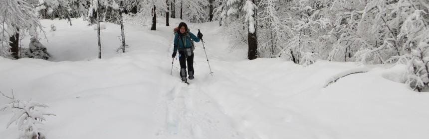 Winterwanderung auf Schneeschuhen Französische Jura 2014
