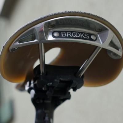 Brooks Cambium C17 carved